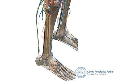 compressione-del-nervo-sciatico